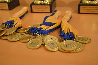 Medaljer till alla solisttävlande