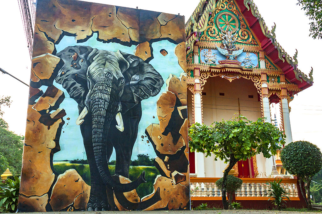 Image of elephant--Chanthaburi
