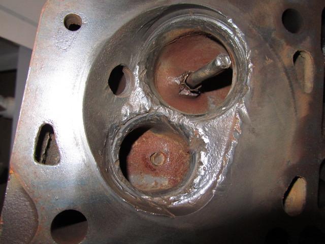 Dove C Head Damage  40954983532_01fe29945e_z