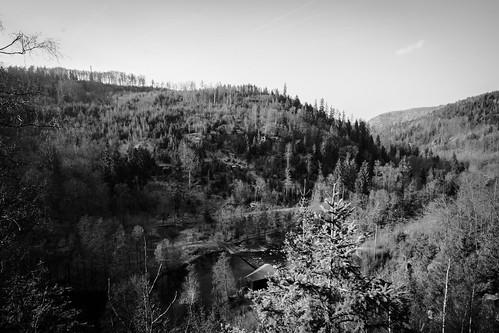 Die Selbitz fließt durch's Tal