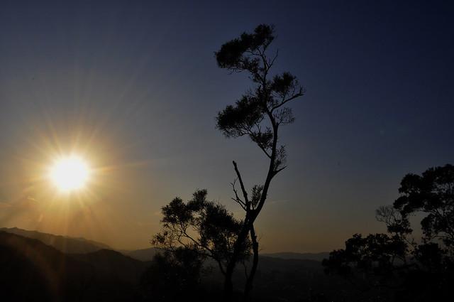 _DSC0026 The Sun