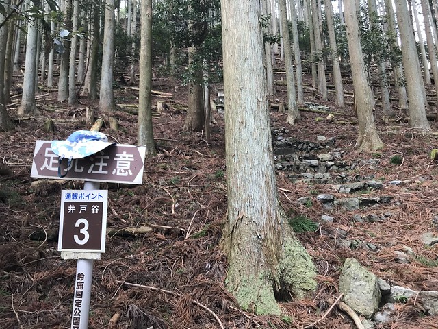 入道ヶ岳 井戸谷3
