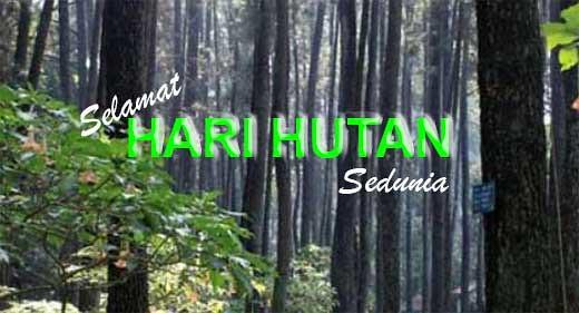 selamat hari hutan sedunia 2018