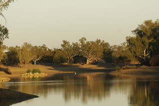 An early morning shot of Cooper Creek near Innamincka!!