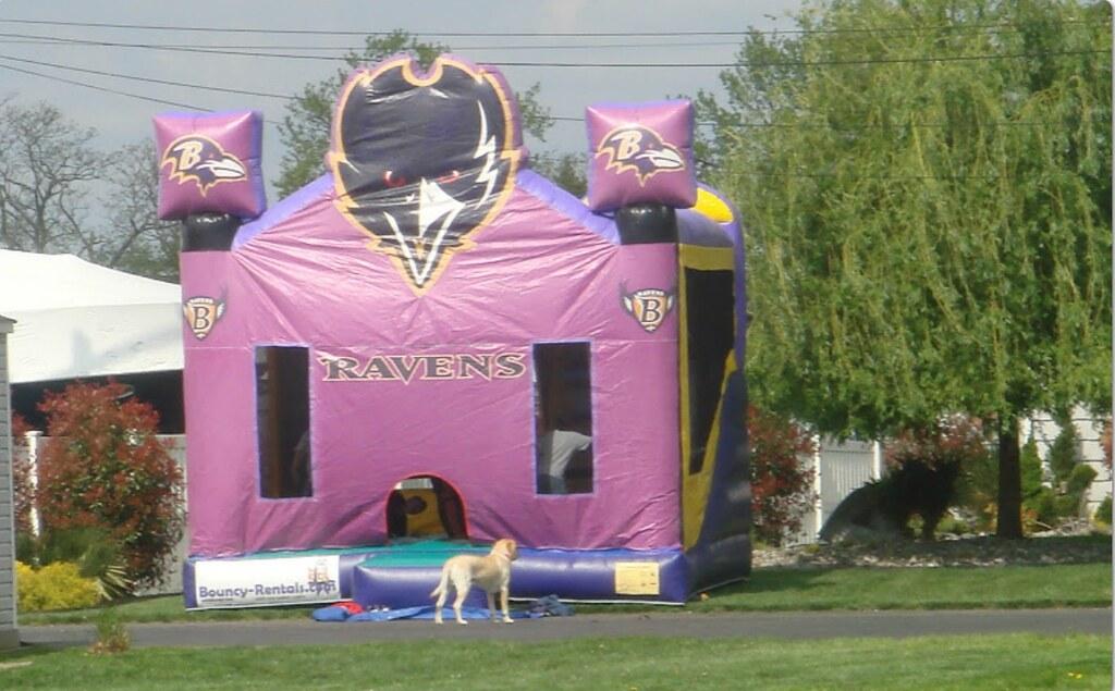 Ravens Combo Bounce