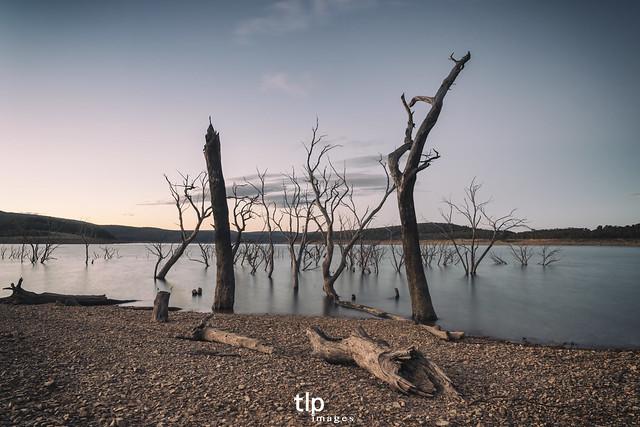 Featured medium photo of Eucumbene on TripHappy's travel guide