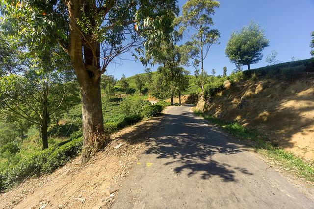 Rendapola-Ambewela Road
