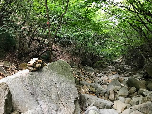 仙ヶ岳 白谷道 ケルン