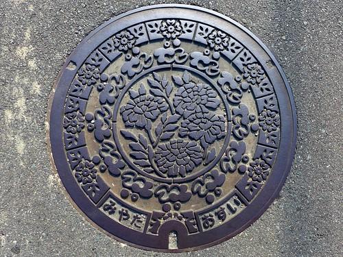 Miyata Fukuoka, manhole cover (福岡県宮田町のマンホール)