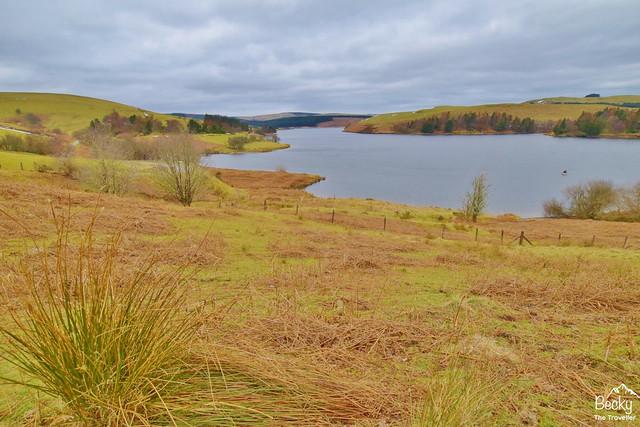 Hafren Forest - Clywedog Reservoir (6)