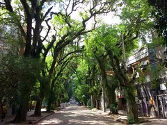 Rua Gonçalo de Carvalho