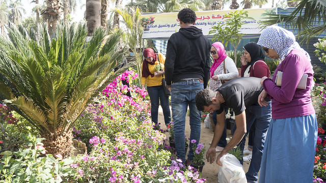 Sellers and buyers at Egypt's Spring Flowers Fair 2018
