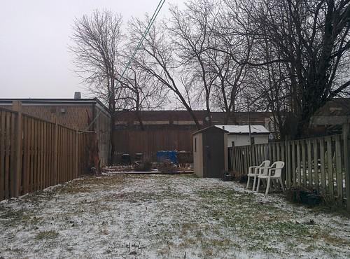 Backyard sleet #toronto #dovercourtvillage #spring #snow #sleet #backyard