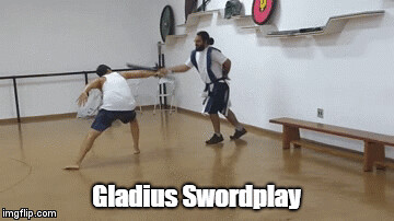 gladius swordplay