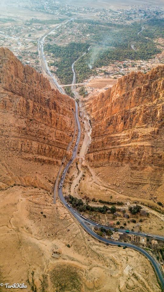 صور نادرة للطبيعة الجزائرية - صفحة 19 41258515062_285962acf4_b