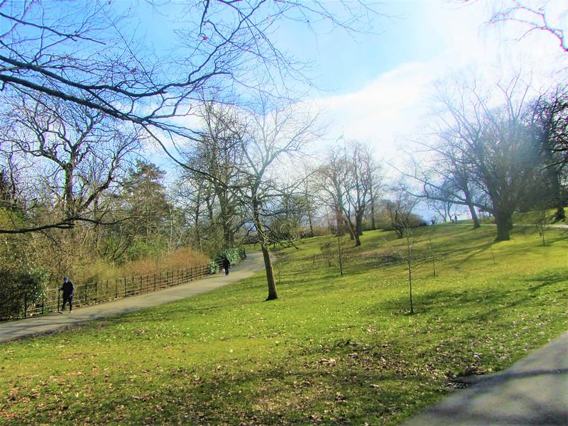 glasgow-ecosse-botanic-gardens-balade-thecityandbeauty.wordpress.com-blog-voyage-IMG_0088 (3)