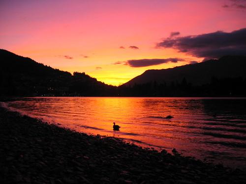 newzealand lake reflection sunrise lago early duck bravo lac nz queenstown redsky top20nz abigfave