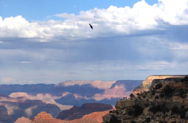 Photo by: http://www.flickr.com/photos/sfreni/231925146/sizes/z/