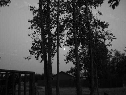 moon evening columbiariver pugetisland rivermile39