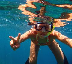 swimming, sports, recreation, outdoor recreation, leisure, swimmer, water sport, underwater, freediving,