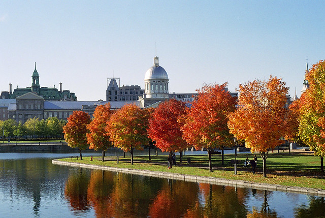 Montreal Foliage and the Marché Bonsecours