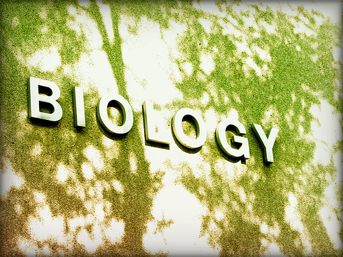 biology lesson plan chrischel s digital portfolio posted below is an assignment for my freshman fall semester biology class 114 fundamentals of life science here at longwood university