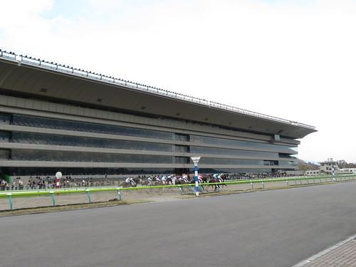 福島競馬場のスタンド前を馬が駆ける