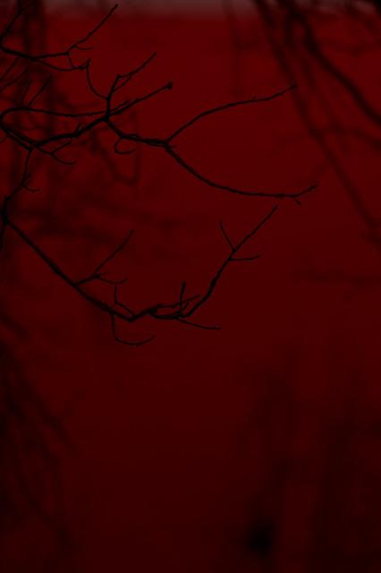 April 03 -Blood sky