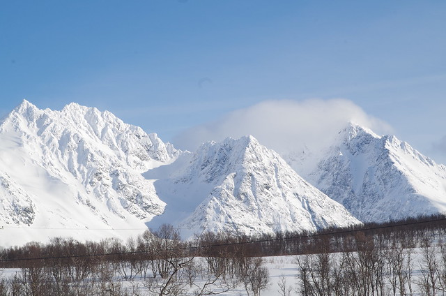 cartes postales de norvège