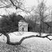 Kew Gardens-19032018-24.jpg