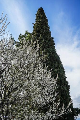 Villeneuve de Berg Ardèche