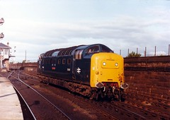 55009 Dundee