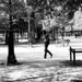 Jardin des Tuileries ◾️ Paris 1er