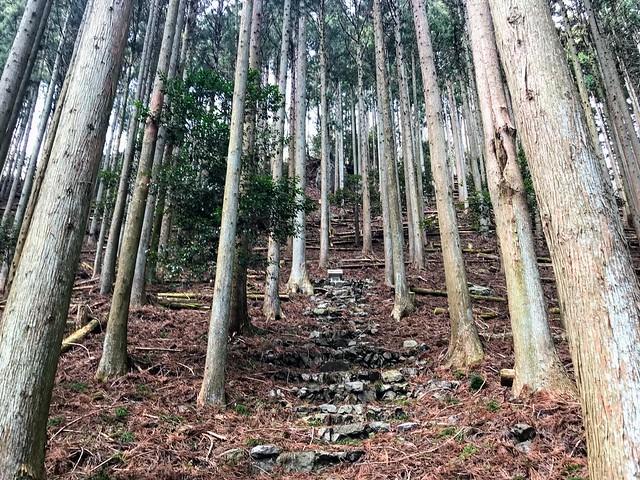 入道ヶ岳 井戸谷 富士社 磐座「石神」