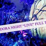 Pandora-Night-Tour