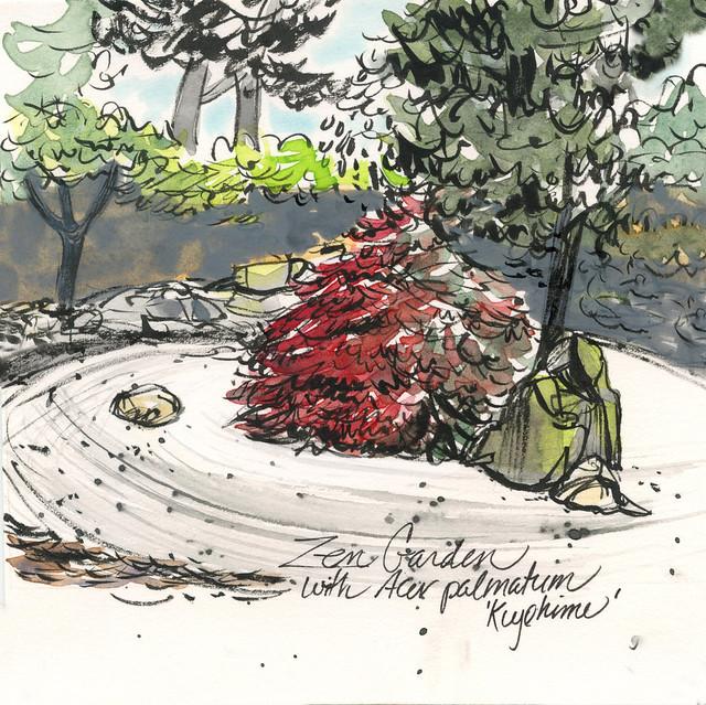 Zen garden, J C Raulston Arboretum