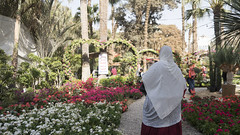 Elections campaigning and flowery arcs at Egypt's Spring Flowers Fair 2018
