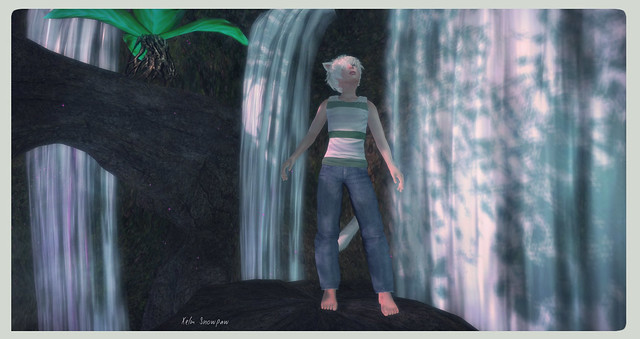 Blog #023: Waterfalls