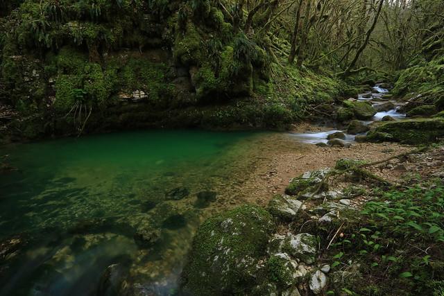 Découverte du magnifique ruisseau de Noirefontaine près de Serrière-sur-Ain