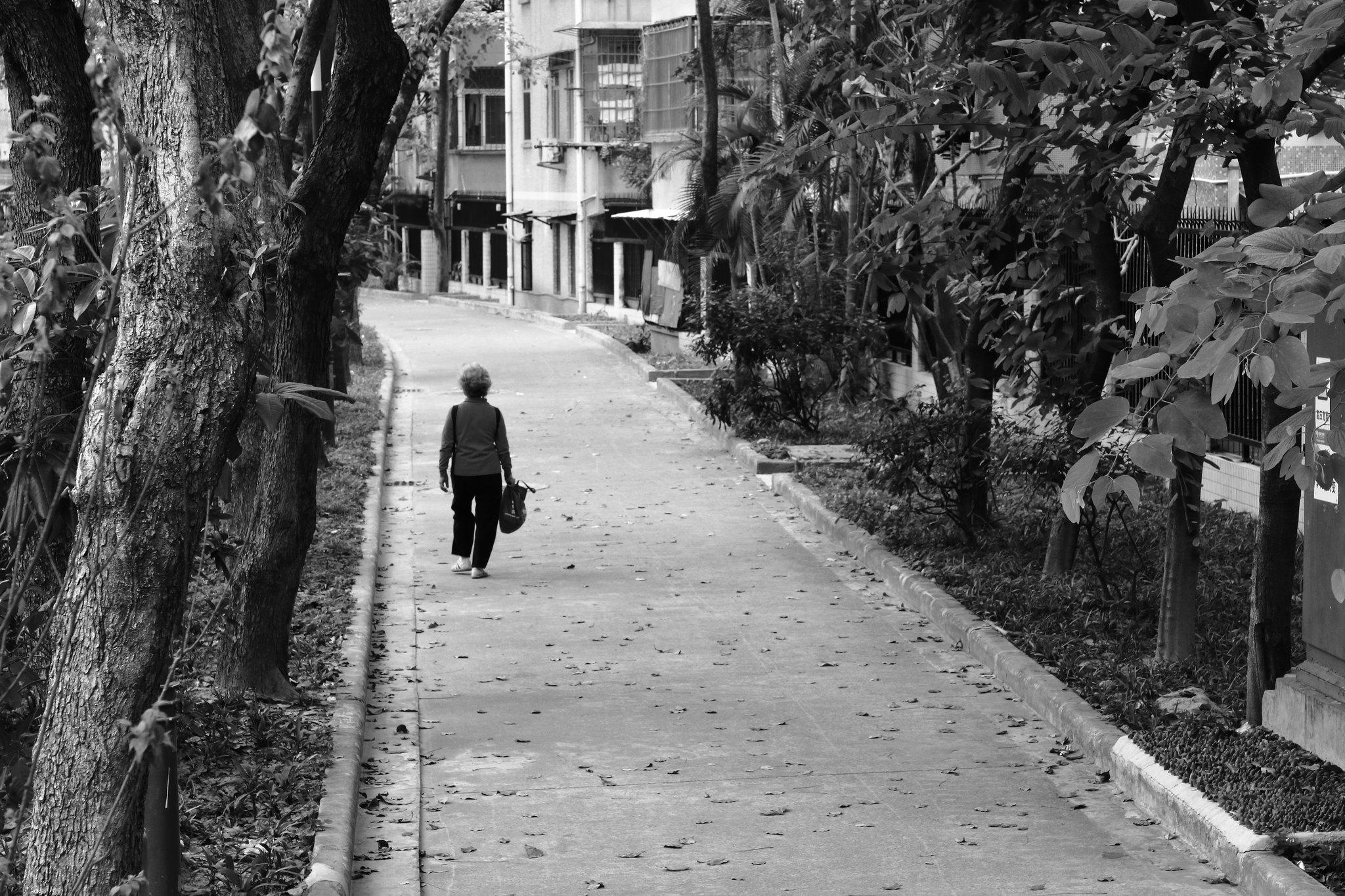 IMG_0879 The walk