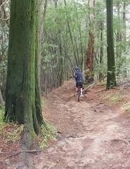 Matthew on the bonus trail