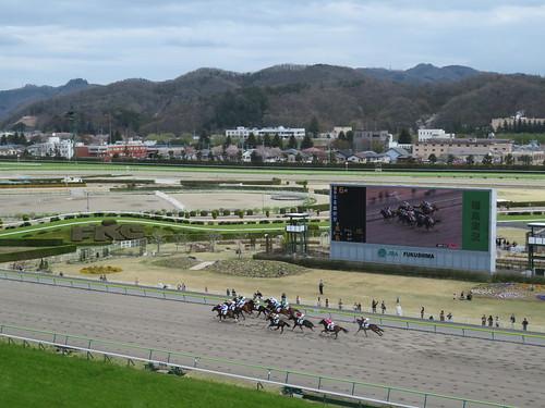 福島競馬場の5階から見たレース風景
