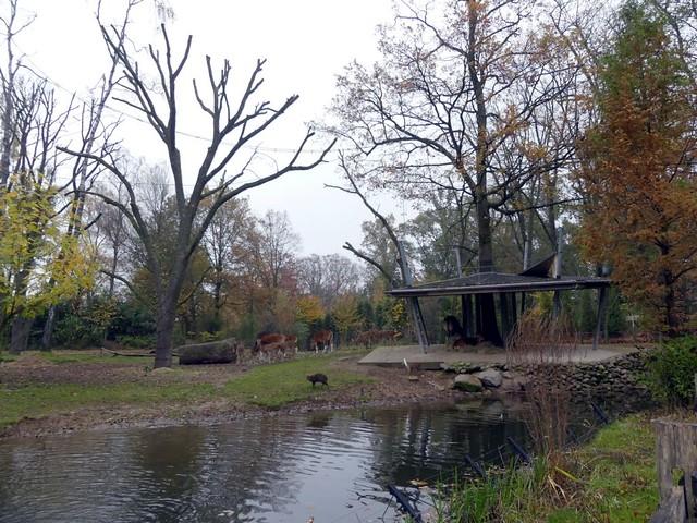 Gemeinschaftsanlage, Burgers Zoo