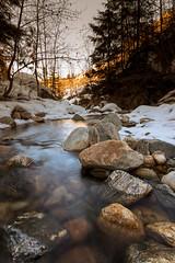 Bellevue Creek