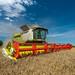 Wheat Harvest 2017 | CLAAS LEXION 770 APS HYBRID Terra Trac Combine Harvester
