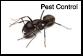 Pest Control Atkinson NH