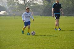 Avanti U8 Tijgers vs SK Wachtebeke