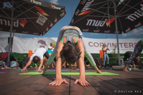Rooftop Yoga 2016