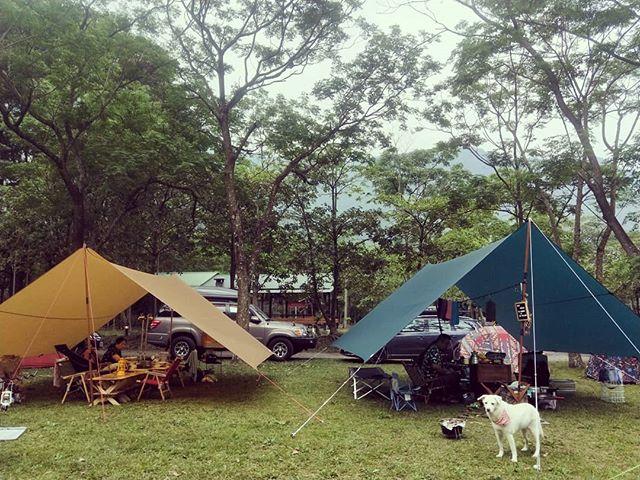 20180406 有伴的早安 #歐北露 #campinglife #ilovecamping #campingwithdogs #TiiTentTeraL方形天幕