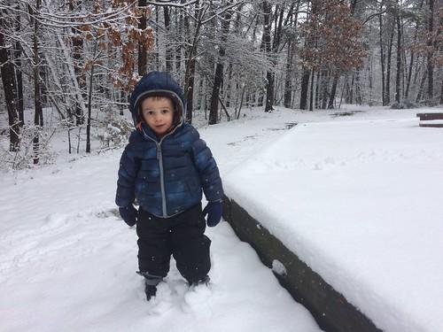 Snow (March 2018)